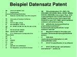 beispiel datensatz patent