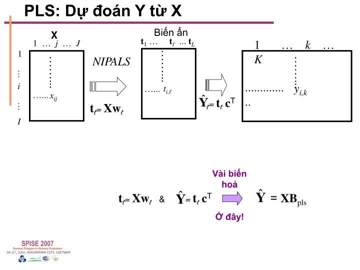 PLS: Dự đoán Y từ X