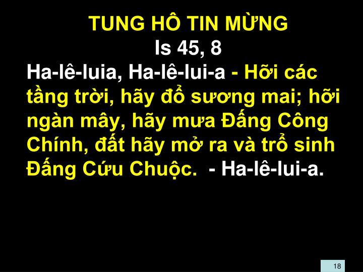 TUNG HÔ TIN MỪNG