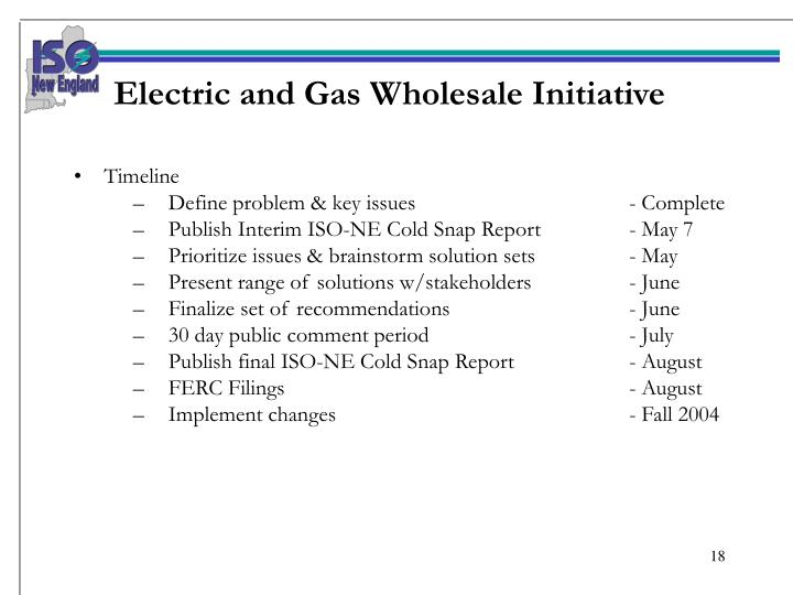 Electric and Gas Wholesale Initiative