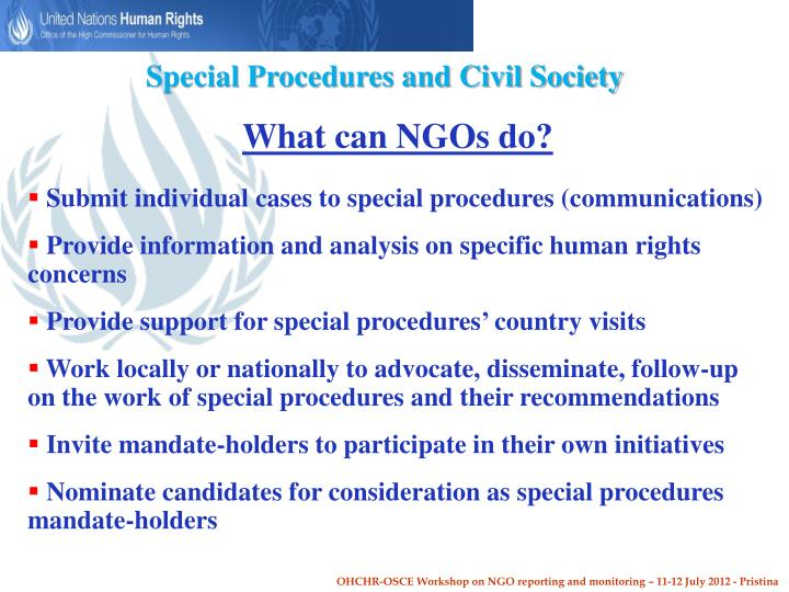 Special Procedures and Civil Society