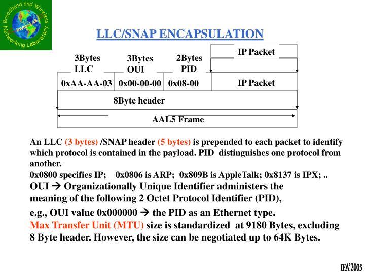 IP Packet