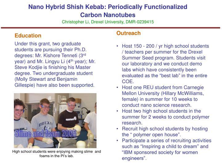 Nano Hybrid Shish Kebab: Periodically Functionalized