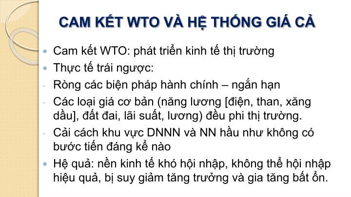 CAM KẾT WTO VÀ HỆ THỐNG GIÁ CẢ