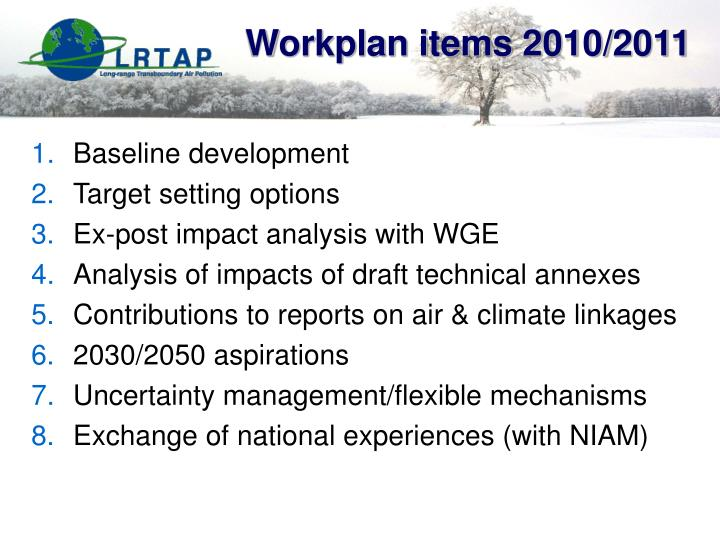 Workplan items 2010/2011