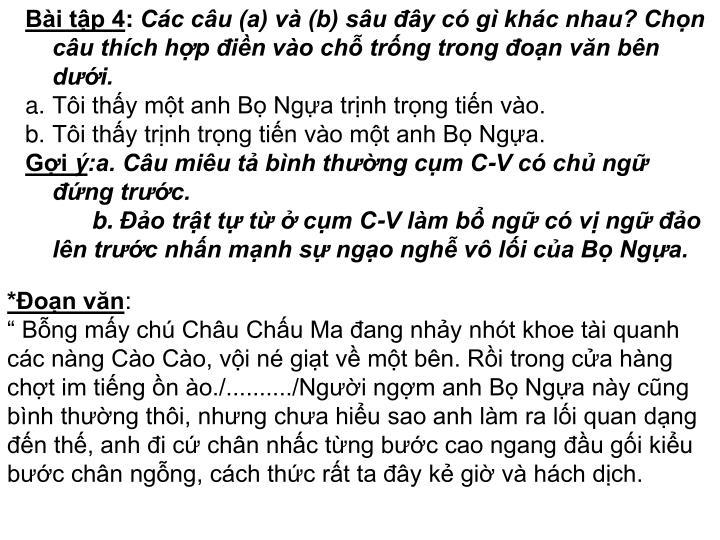 Bài tập 4