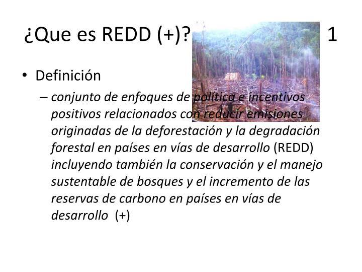 ¿Que es REDD (+)?                           1