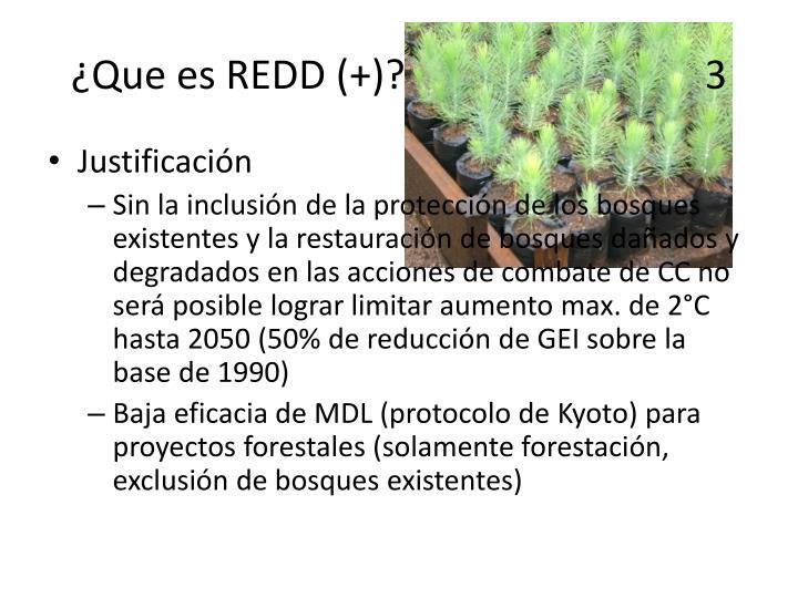 ¿Que es REDD (+)?                              3