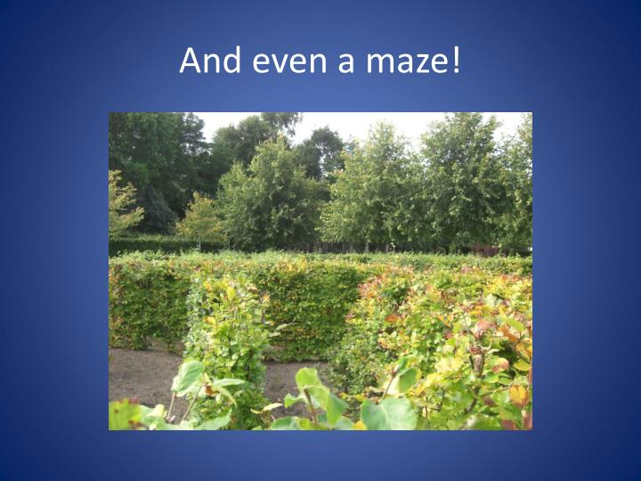 And even a maze!