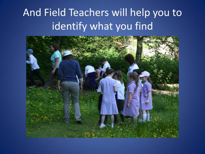 And Field Teachers will help you to identify what you find