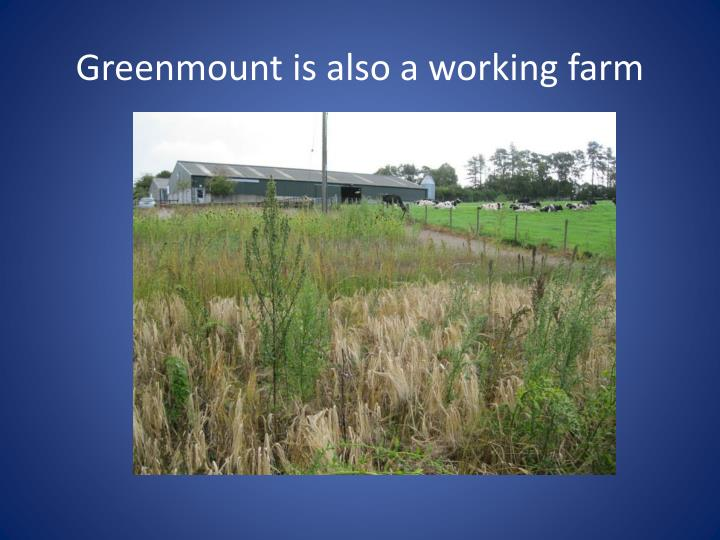 Greenmount is also a working farm