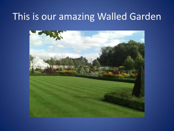 This is our amazing Walled Garden