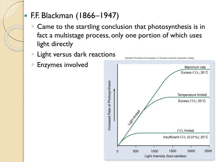 F.F. Blackman (1866