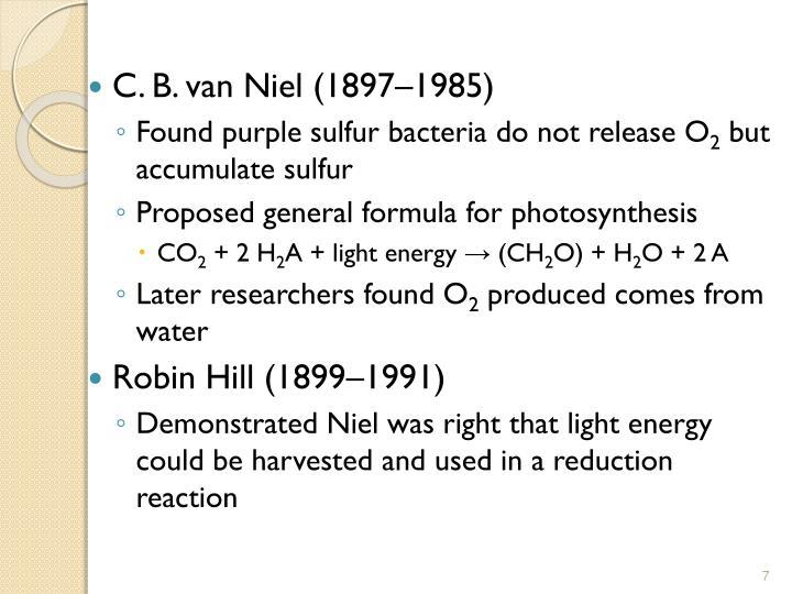 C. B. van Niel (1897