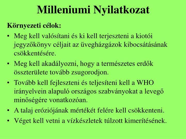 Milleniumi Nyilatkozat