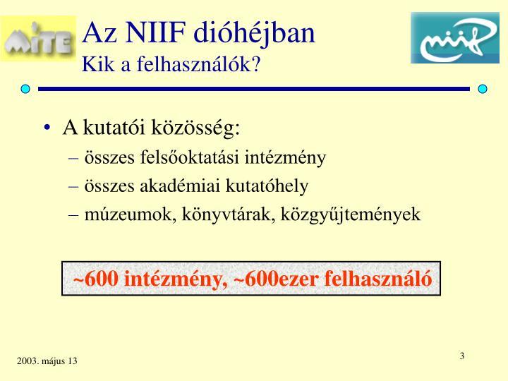Az NIIF dióhéjban