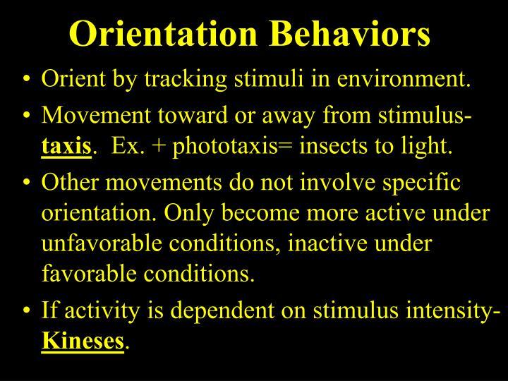 Orientation Behaviors