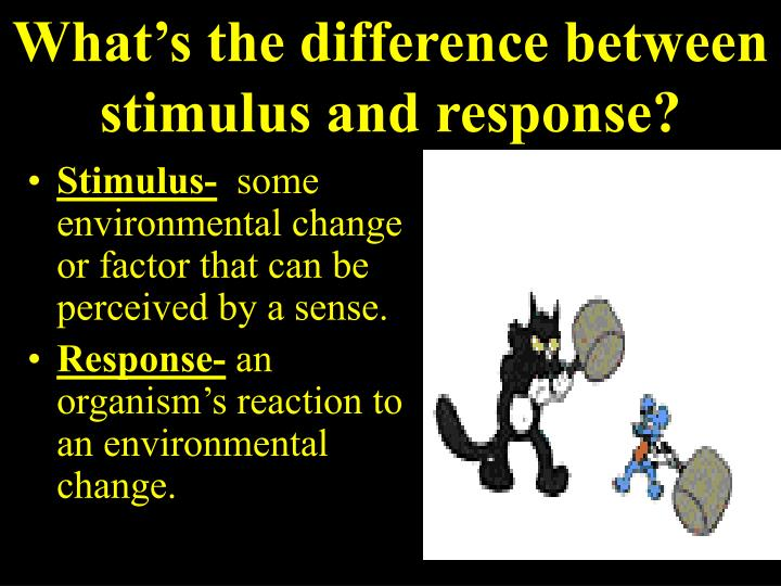 What's the difference between stimulus and response?