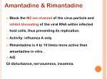 amantadine rimantadine