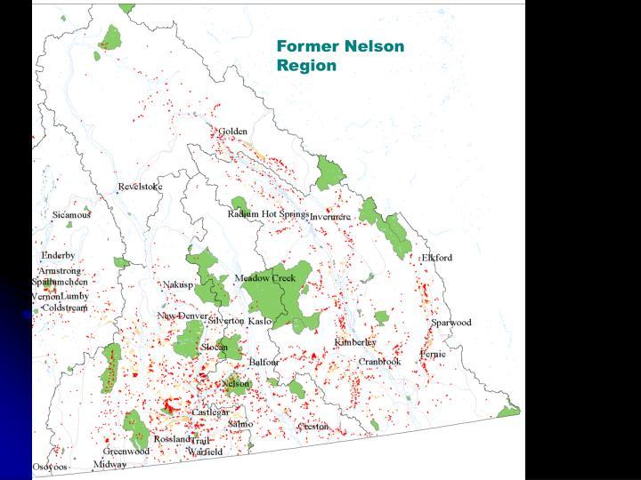 Former Nelson Region