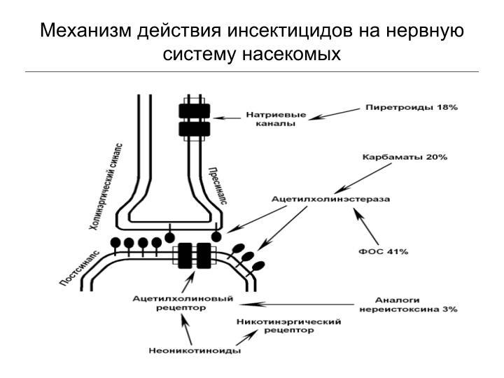 Механизм действия инсектицидов на нервную систему насекомых