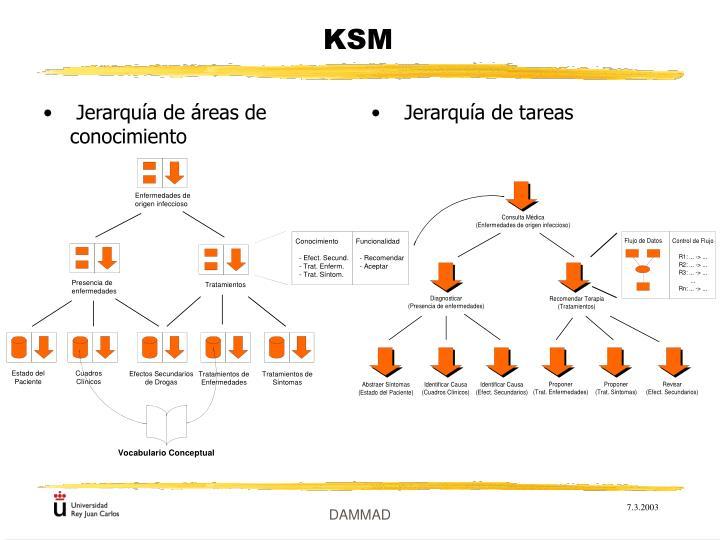 Jerarquía de áreas de conocimiento