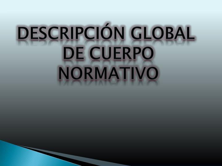 Descripción Global