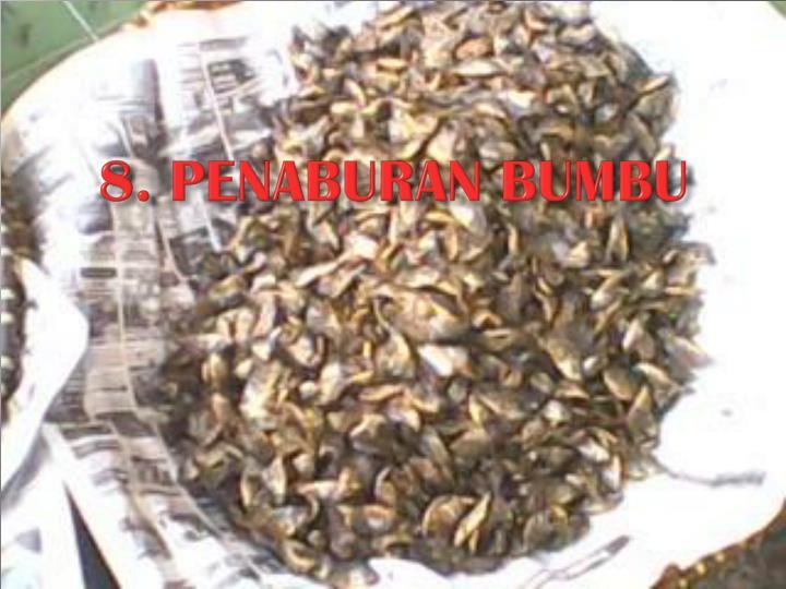 8. PENABURAN BUMBU