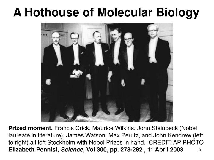 A Hothouse of Molecular Biology