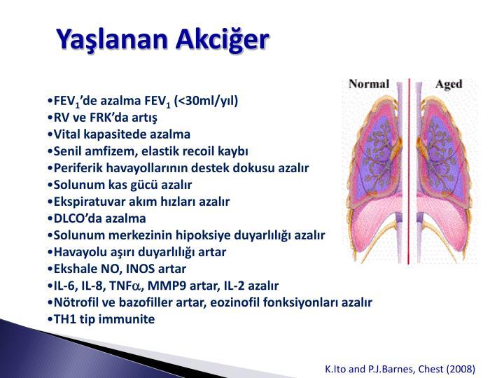 Yaşlanan Akciğer