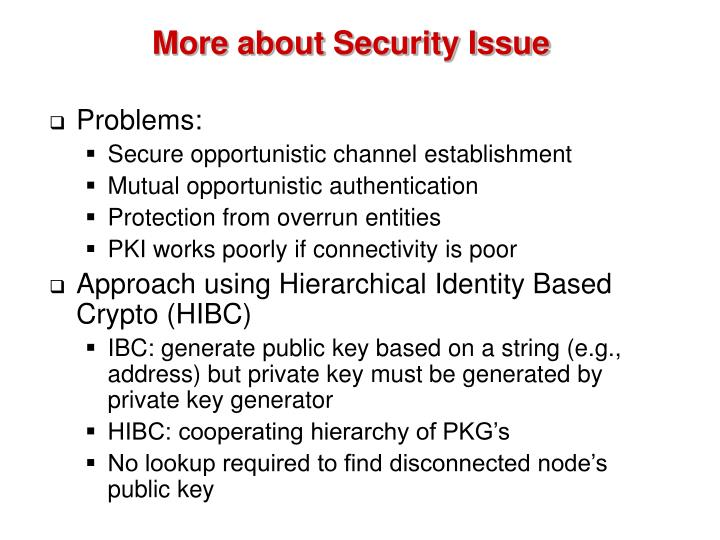 More about Security Issue