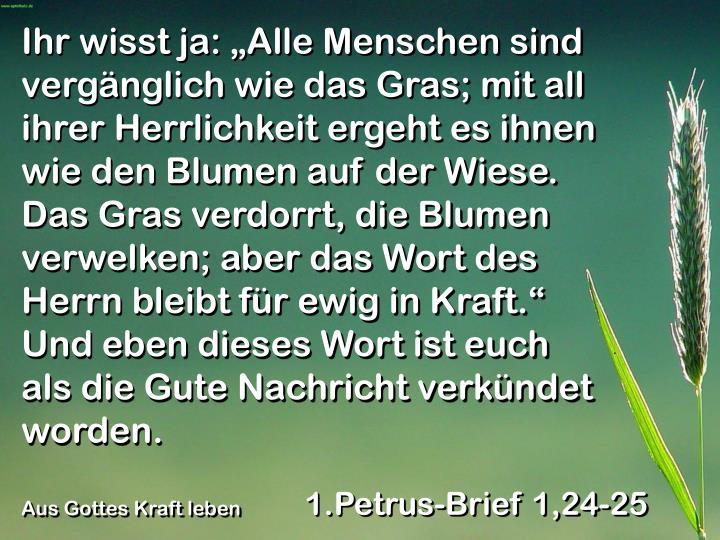 """Ihr wisst ja: """"Alle Menschen sind vergänglich wie das Gras; mit all ihrer Herrlichkeit ergeht es ihnen wie den Blumen auf der Wiese. Das Gras verdorrt, die Blumen verwelken; aber das Wort des Herrn bleibt für ewig in Kraft."""" Und eben dieses Wort ist euch als die Gute Nachricht verkündet worden."""