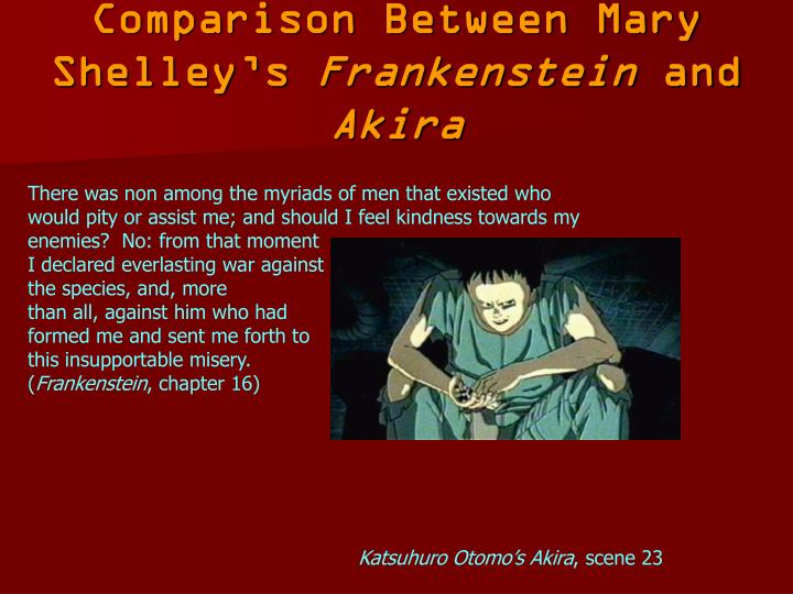 Comparison Between Mary Shelley's