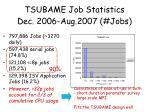 tsubame job statistics dec 2006 aug 2007 jobs