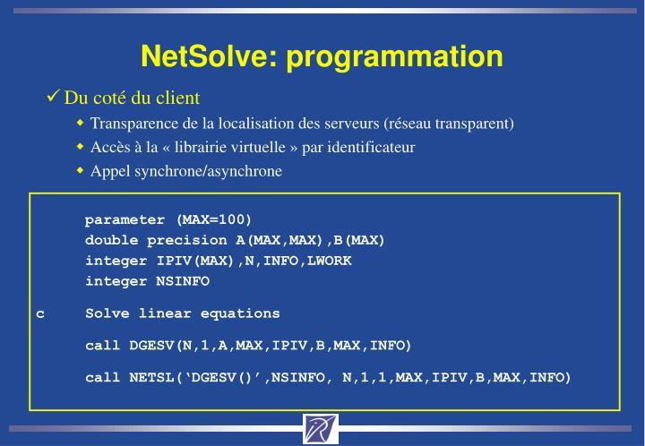 NetSolve: programmation