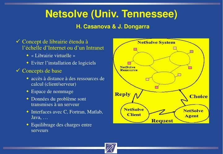 Netsolve (Univ. Tennessee)