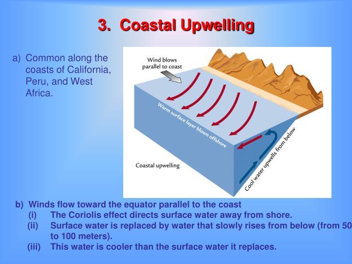 3.  Coastal Upwelling