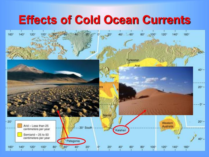 Effects of Cold Ocean Currents