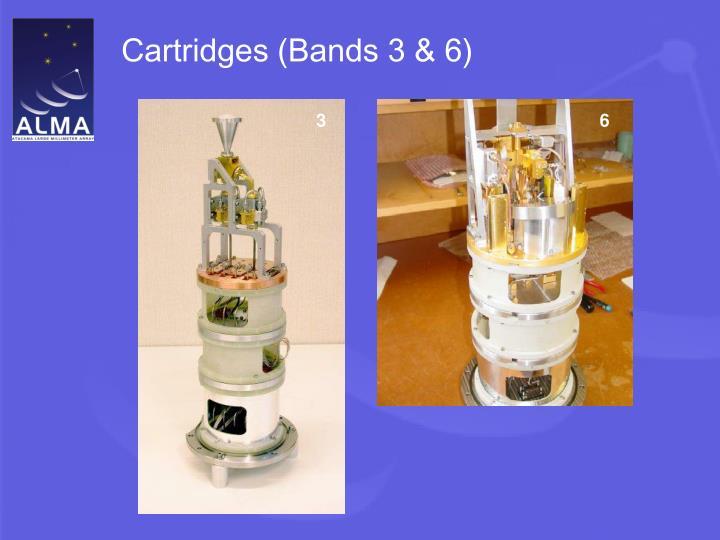 Cartridges (Bands 3 & 6)