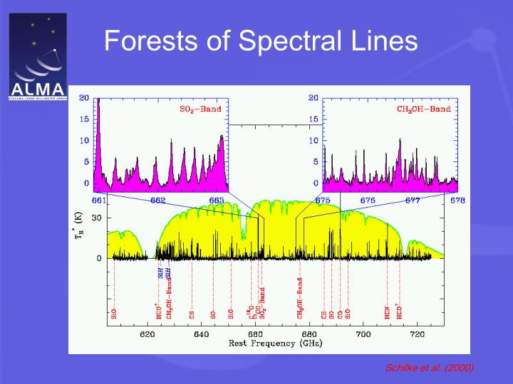 Forests of Spectral Lines