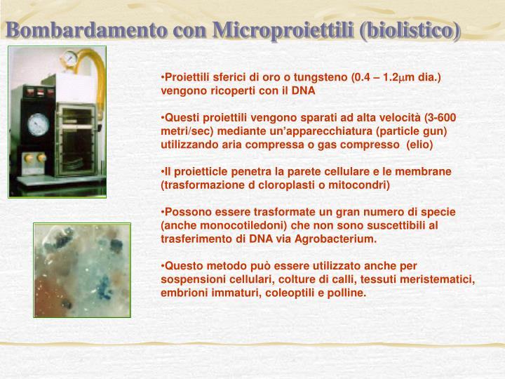 Bombardamento con Microproiettili (biolistico)