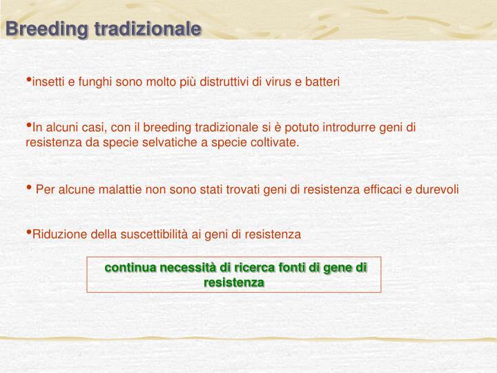 Breeding tradizionale