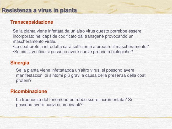 Resistenza a virus in pianta