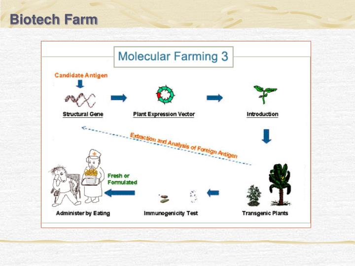 Biotech Farm
