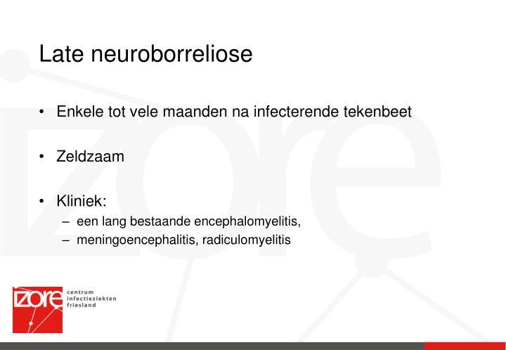 Late neuroborreliose