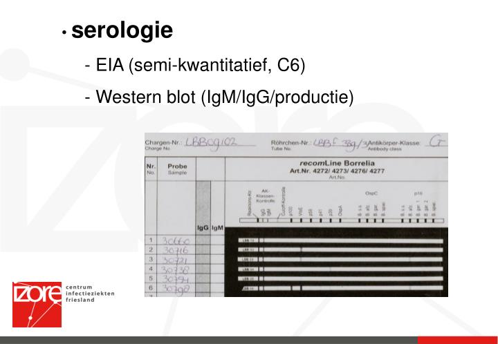 serologie