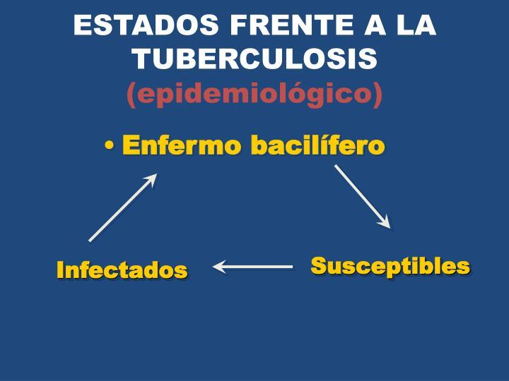 ESTADOS FRENTE A LA TUBERCULOSIS