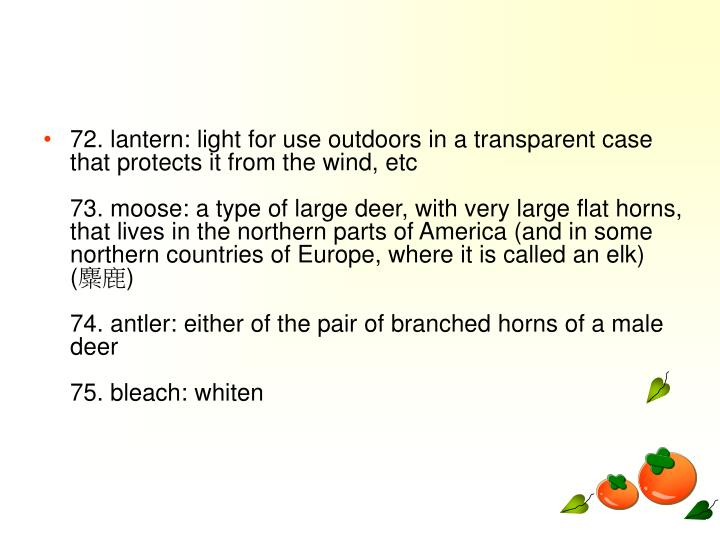 72. lantern: light for use outdoors in a transparent case that protects it from the wind, etc