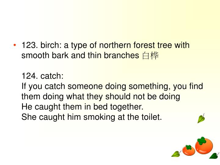123. birch: a type of northern forest tree with smooth bark and thin branches