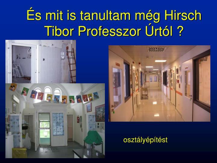 És mit is tanultam még Hirsch Tibor Professzor Úrtól ?